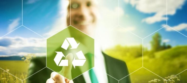 Quality Assurance and the Environmental Responsibility of Businesses